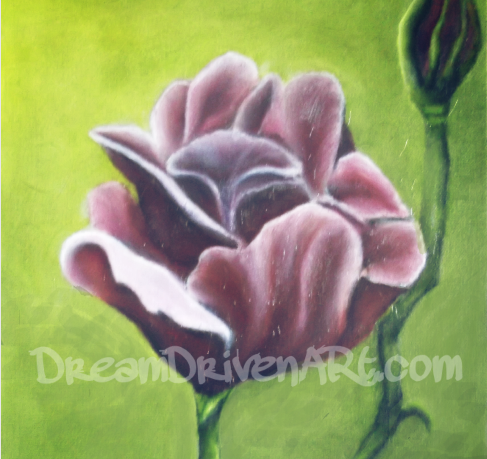 Oil Painting Flowers – Part 1