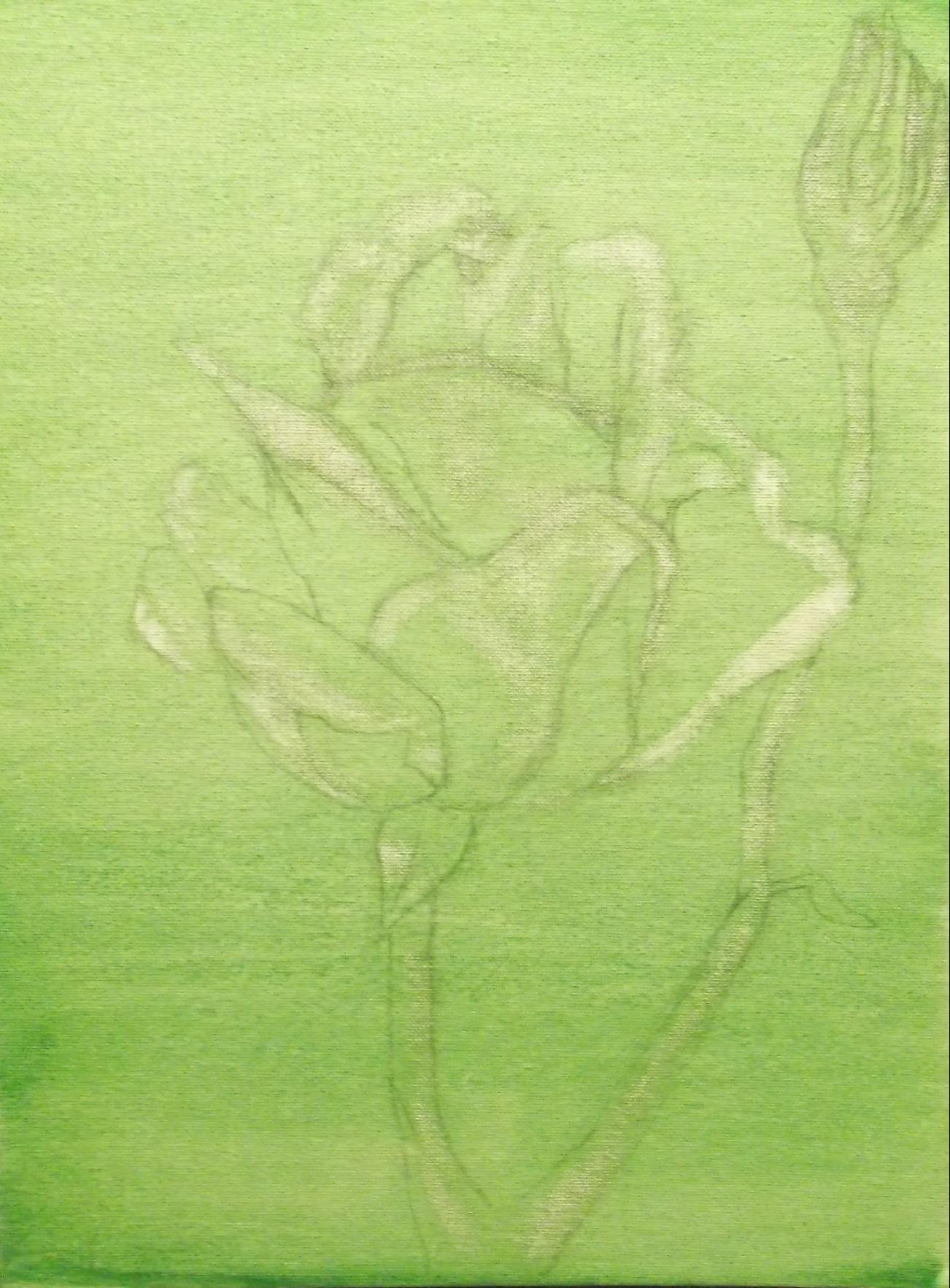 twilight rose imprimatura layer