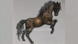 Pictures horse drawings horse rearing up