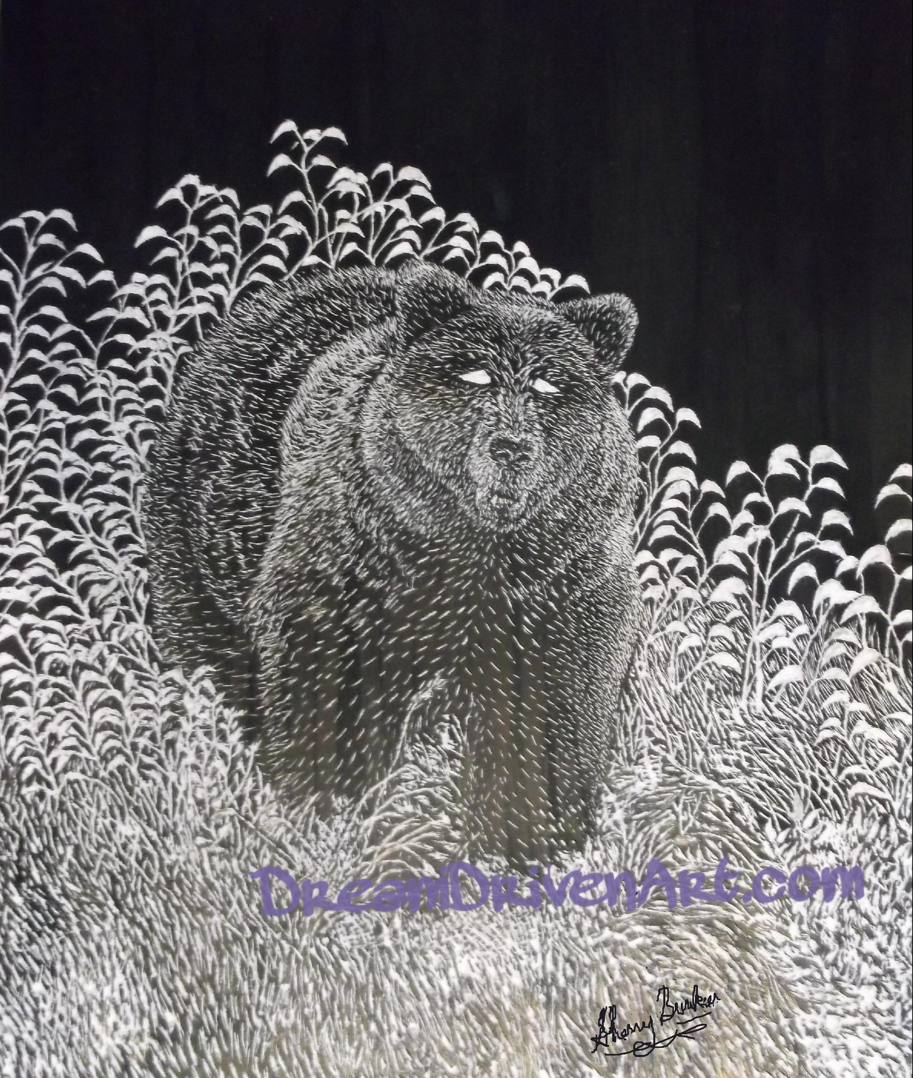 black bear realistic scratch art