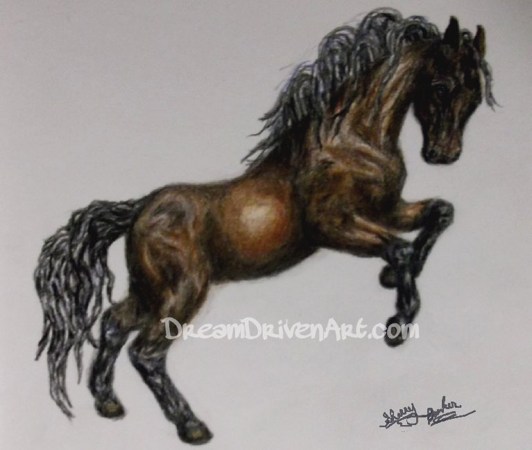 horse rearing up colored pencil drawing