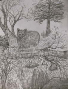 bear in the woods sketch