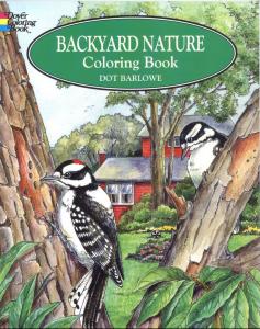 adult coloring book backyard nature