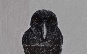 Ink drawing of a crow with gray background