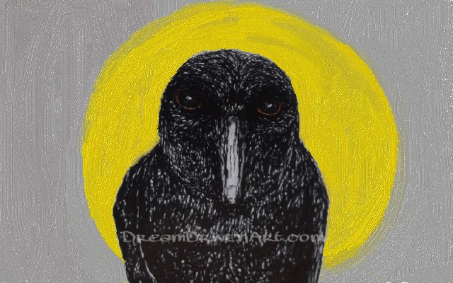 The crow drawing with moon background