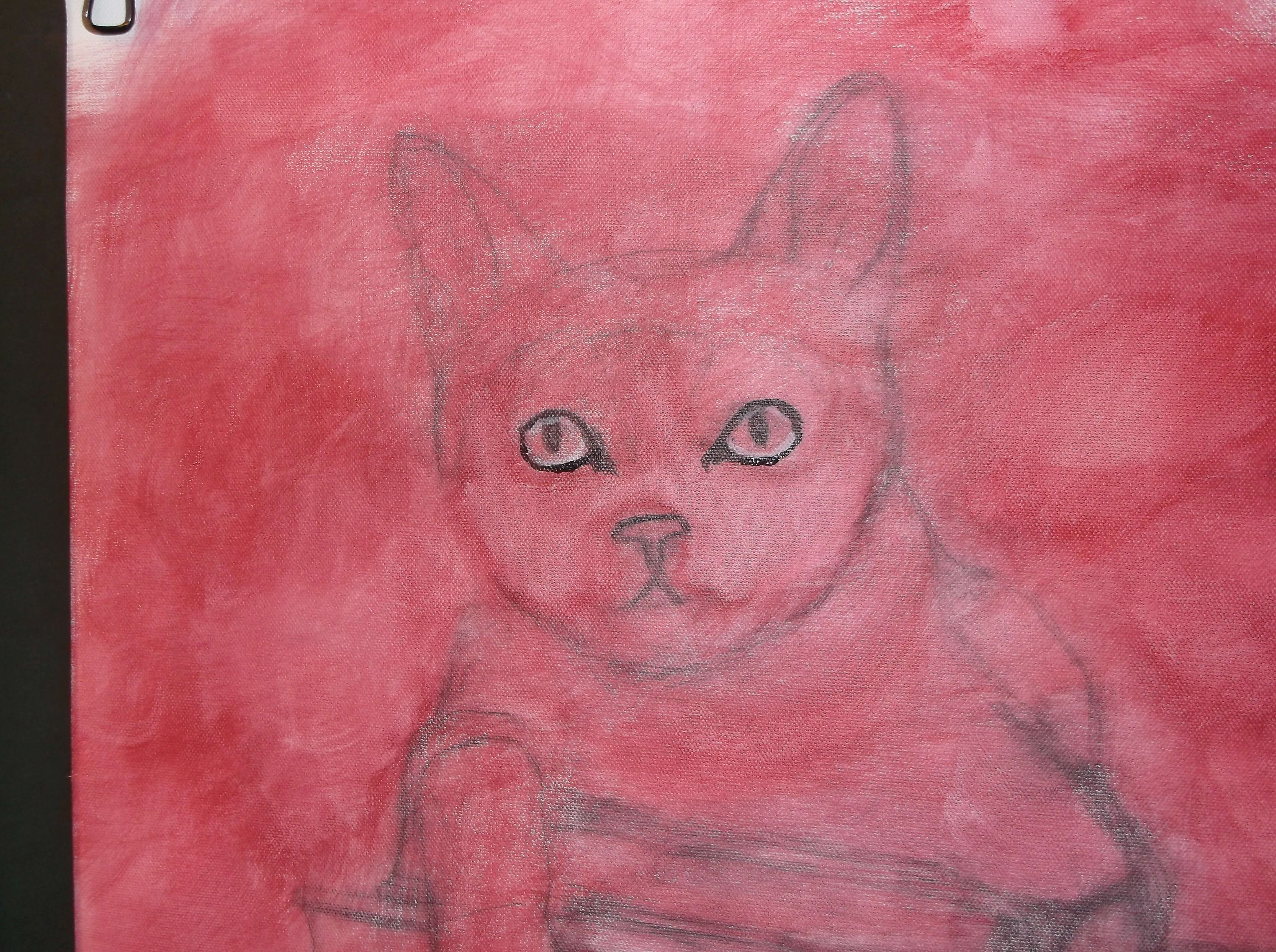 black-cat-painting-outlining-the-eyes