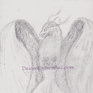 Work in Progress Artwork – Phoenix Bird Drawing